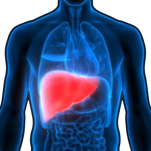 سلولهای کبدی ملتهب یا تخریبشده مقادیر بیشتری از مواد شیمیایی خاص، از جمله آنزیمهای کبدی، به جریان خون آزاد میکنند که میتواند منجر به افزایش آنزیمهای کبدی در تستهای خونی شود.