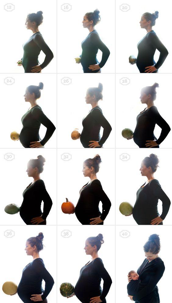 هفته-به-هفته-بارداری