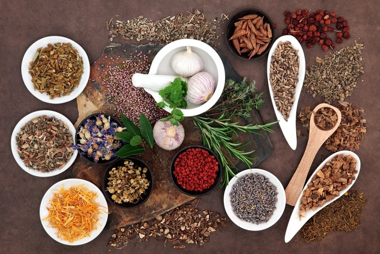 Herbs-for-infertility-treatment
