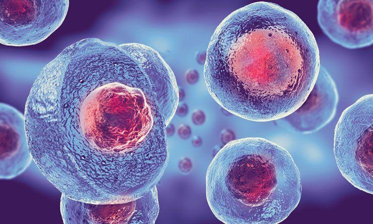 حمله ویروس کرونا به ریه